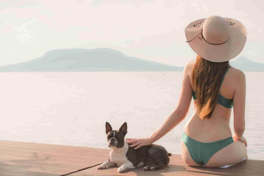 balatoni szállás kutyával